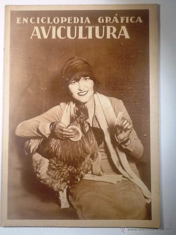 AVICULTURA. 1929 ENCICLOPEDIA GRAFICA MUY ILUSTRADA (Libros Antiguos, Raros y Curiosos - Enciclopedias)