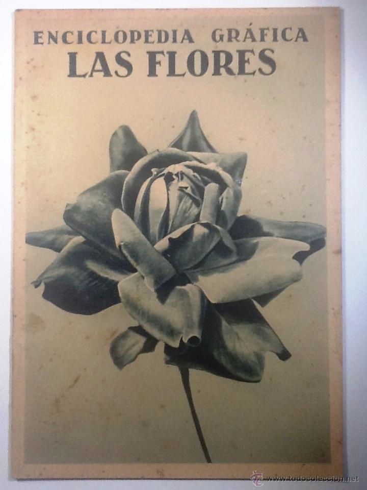 LAS FLORES. 1930 ENCICLOPEDIA GRAFICA MUY ILUSTRADA (Libros Antiguos, Raros y Curiosos - Enciclopedias)