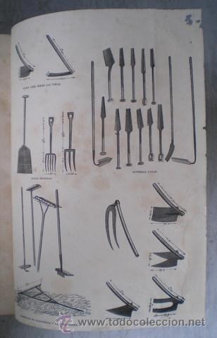Enciclopedias antiguas: NICOLÁS Mª SERRANO: DICCIONARIO UNIVERSAL DE LA LENGUA CASTELLANA CIENCIAS Y ARTES. LÁMINAS GRABADAS - Foto 9 - 54765561