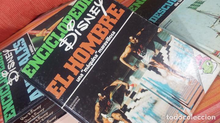 Enciclopedias antiguas: ENCICLOPEDIA DISNEY - Foto 8 - 83573860