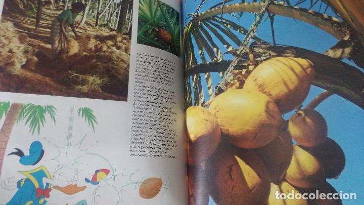 Enciclopedias antiguas: ENCICLOPEDIA DISNEY - Foto 28 - 83573860