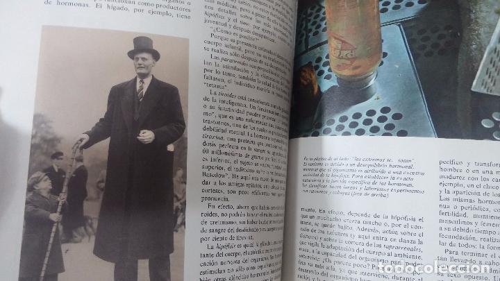 Enciclopedias antiguas: ENCICLOPEDIA DISNEY - Foto 46 - 83573860