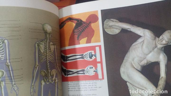 Enciclopedias antiguas: ENCICLOPEDIA DISNEY - Foto 50 - 83573860