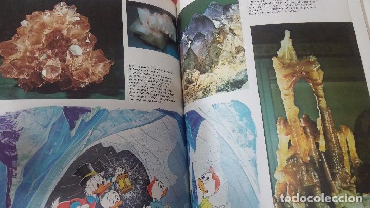 Enciclopedias antiguas: ENCICLOPEDIA DISNEY - Foto 61 - 83573860