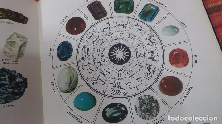 Enciclopedias antiguas: ENCICLOPEDIA DISNEY - Foto 63 - 83573860