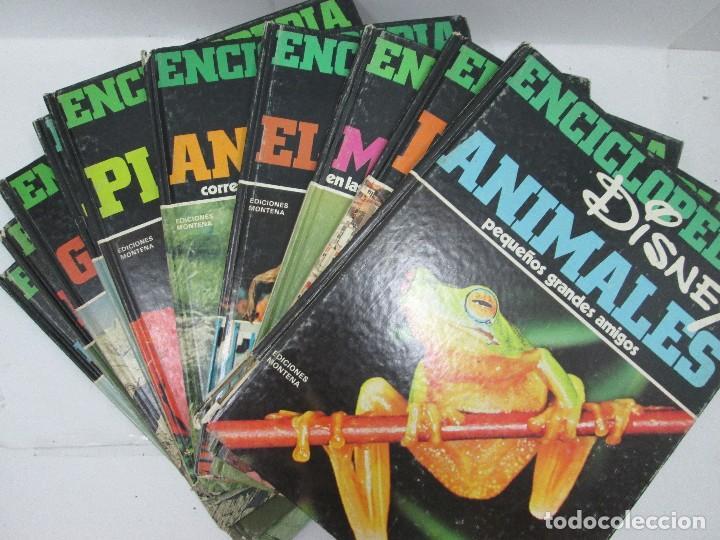 ENCICLOPEDIA DISNEY 1971 COMPLETA - EDICIONES MONTENA, WALT DISNEY PRODUCTIONS (Libros Antiguos, Raros y Curiosos - Enciclopedias)