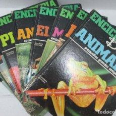 Enciclopedias antiguas: ENCICLOPEDIA DISNEY 1971 COMPLETA - EDICIONES MONTENA, WALT DISNEY PRODUCTIONS. Lote 95554539