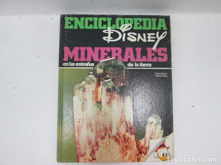 Enciclopedias antiguas: ENCICLOPEDIA DISNEY 1971 COMPLETA - EDICIONES MONTENA, WALT DISNEY PRODUCTIONS - Foto 2 - 95554539