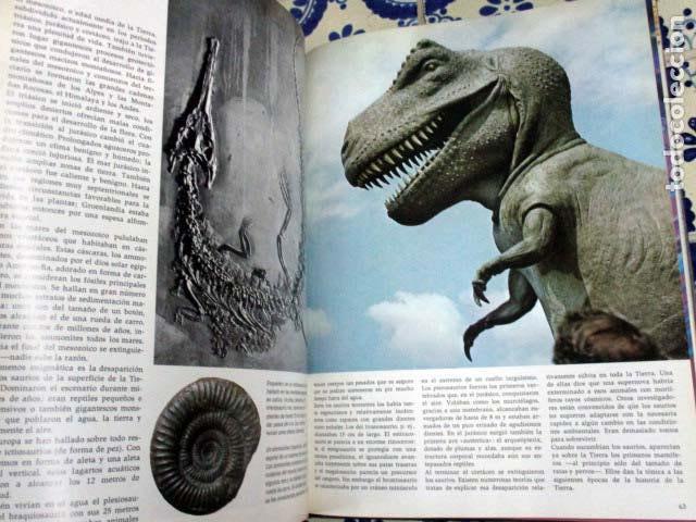 Enciclopedias antiguas: El Mundo / El Hombre / La Vida / La Tierra. 4 Volúmenes, Completa. - Foto 8 - 100211335