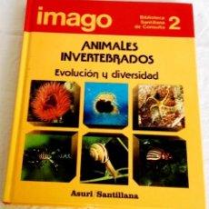 Enciclopedias antiguas: IMAGO, ANIMALES INVERTEBRADOS, EVOLUCIÓN Y DIVERSIDAD - ASURI / SANTILLANA, Nº2, 1990. Lote 141472706