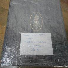 Enciclopedias antiguas: PLANTAS Y FLORES. Lote 143317242