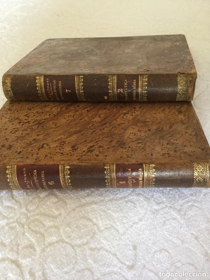 DOS TOMOS DE ENCICLOPEDIA VETERINARIA (Libros Antiguos, Raros y Curiosos - Enciclopedias)