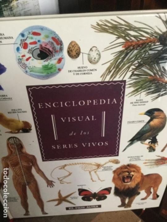 Enciclopedias antiguas: Enciclopedia visual de los seres vivos.El Pais/Altea. 3 Tomos Tres volúmenes . Precio total. - Foto 2 - 169102612