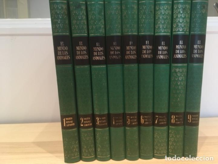 EL MUNDO DE LOS ANIMALES. NOGUER RIZZOLI LAROUSSE (Libros Antiguos, Raros y Curiosos - Enciclopedias)