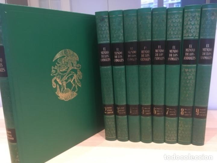 Enciclopedias antiguas: El mundo de los animales. Noguer Rizzoli Larousse - Foto 2 - 183406447