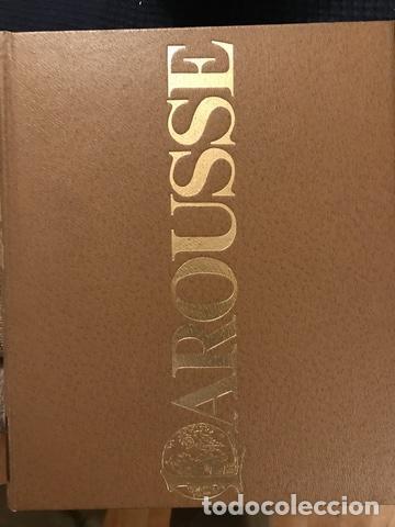 Enciclopedias antiguas: 1983 ENCICLOPEDIA DICCIONARIO LAROUSSE - Foto 7 - 189916093
