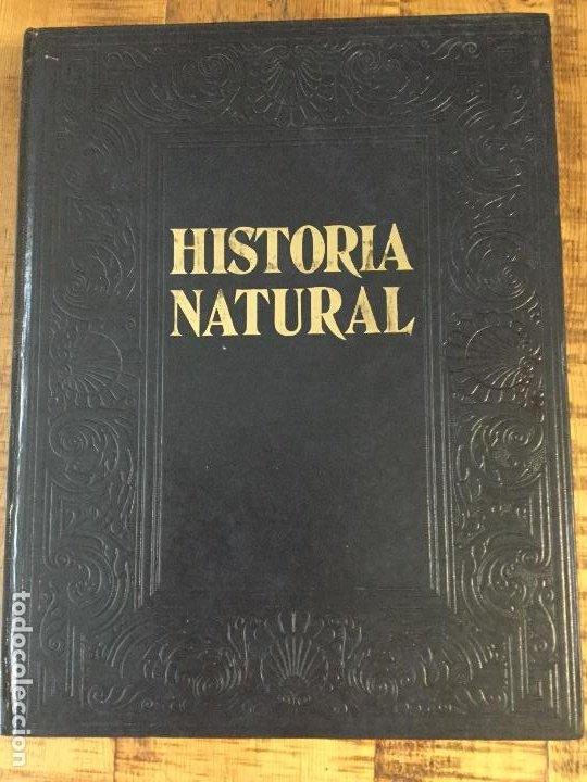 Enciclopedias antiguas: LOTE DE 8 ENCICLOPEDIAS -7 GRAN ENCICLOPEDIA INTERACTIVA OCEANO - 1 HISTORIA NATURAL VERTEBRADOS - Foto 24 - 190208486