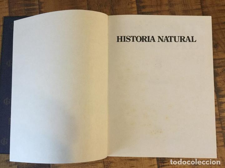 Enciclopedias antiguas: LOTE DE 8 ENCICLOPEDIAS -7 GRAN ENCICLOPEDIA INTERACTIVA OCEANO - 1 HISTORIA NATURAL VERTEBRADOS - Foto 27 - 190208486