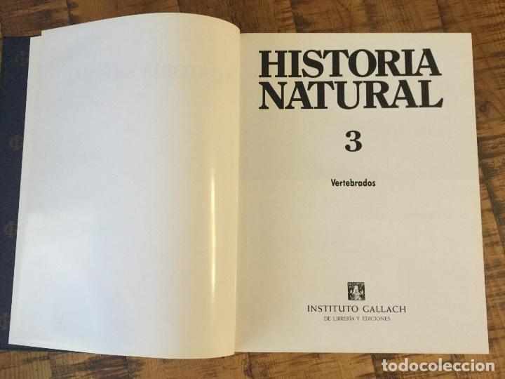 Enciclopedias antiguas: LOTE DE 8 ENCICLOPEDIAS -7 GRAN ENCICLOPEDIA INTERACTIVA OCEANO - 1 HISTORIA NATURAL VERTEBRADOS - Foto 28 - 190208486