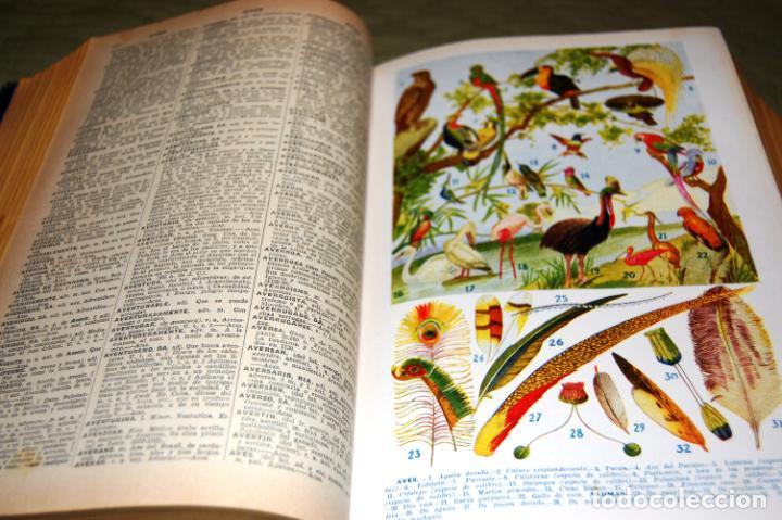 Enciclopedias antiguas: ENCICLOPEDIA SOPENA, NUEVO DICCIONARIO ILUSTRADO DE LA LENGUA ESPAÑOLA. 2 TOMOS, AÑO 1933. - Foto 4 - 191287471