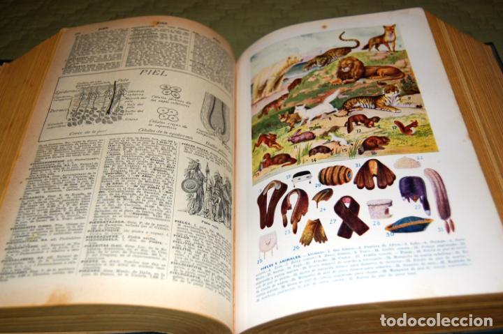 Enciclopedias antiguas: ENCICLOPEDIA SOPENA, NUEVO DICCIONARIO ILUSTRADO DE LA LENGUA ESPAÑOLA. 2 TOMOS, AÑO 1933. - Foto 15 - 191287471