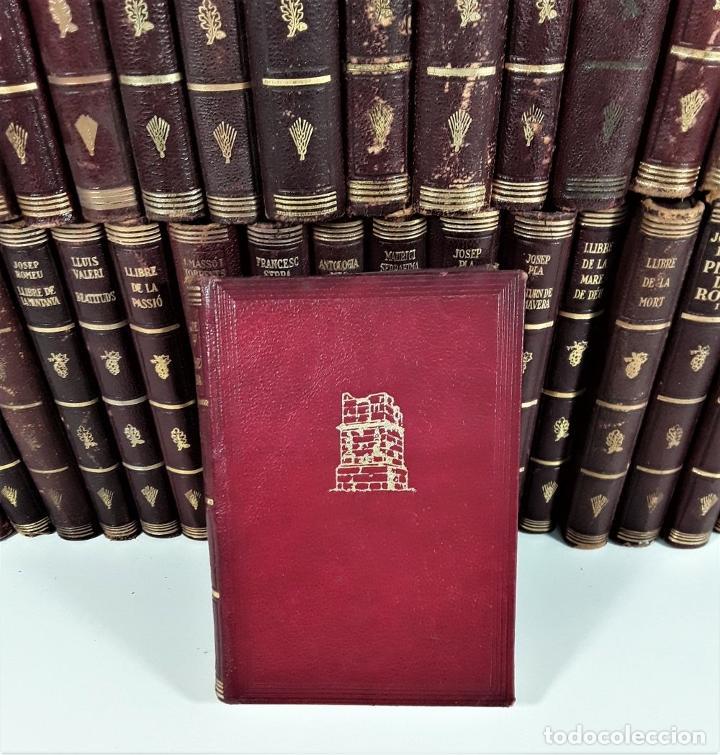 Enciclopedias antiguas: BIBLIOTECA SELECTA. 91 EJEMPLARES. BARCELONA. SIGLO XX. - Foto 4 - 170056644