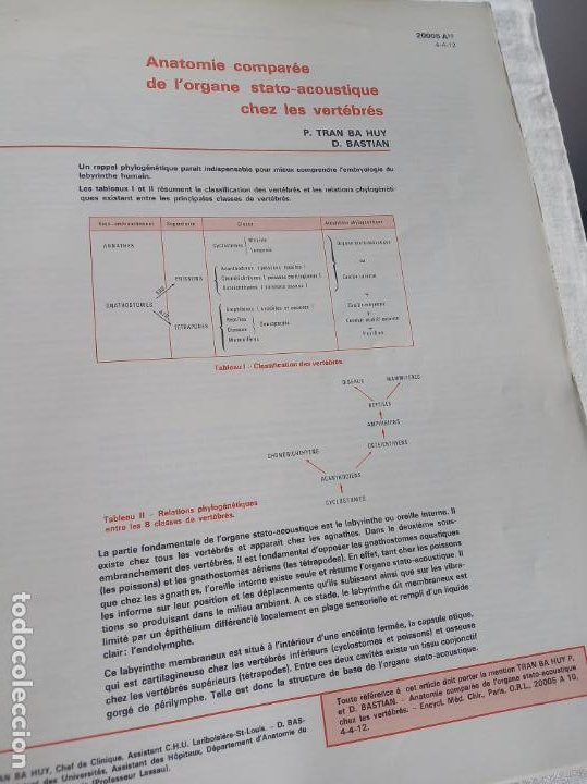 Enciclopedias antiguas: Encyclopédie médico chirurgicale Oto-rhino laryngologie.3 tomos. LAFFONT, A. P. Comité Scientifique. - Foto 6 - 197843958