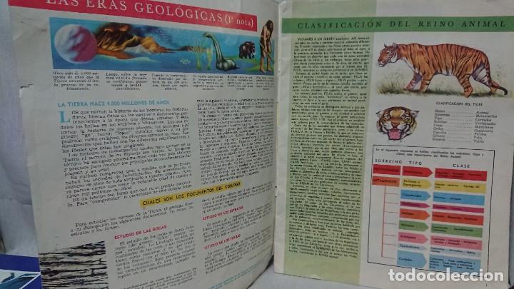 Enciclopedias antiguas: ENCICLOPEDIA ESTUDIANTIL N° 0 AÑO I - 27 NOVIEMBRE 1962 - Foto 4 - 198340855