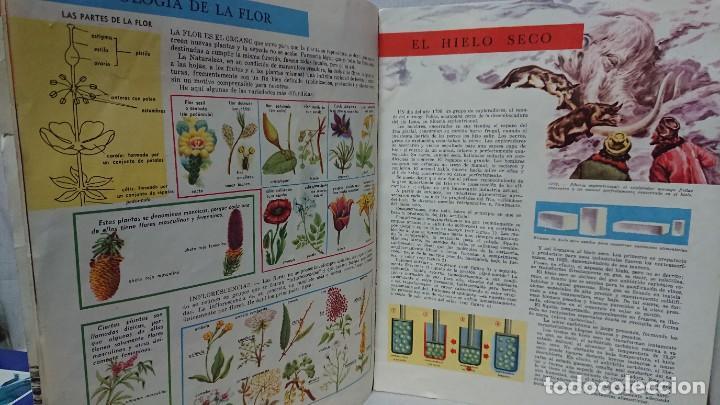 Enciclopedias antiguas: ENCICLOPEDIA ESTUDIANTIL N° 0 AÑO I - 27 NOVIEMBRE 1962 - Foto 6 - 198340855