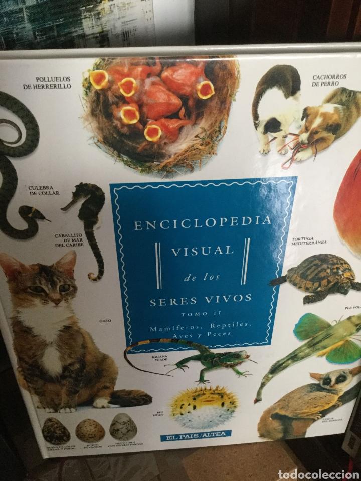 Enciclopedias antiguas: Enciclopedia visual de los seres vivos.El Pais/Altea. 3 Tomos Tres volúmenes - Foto 2 - 208422006