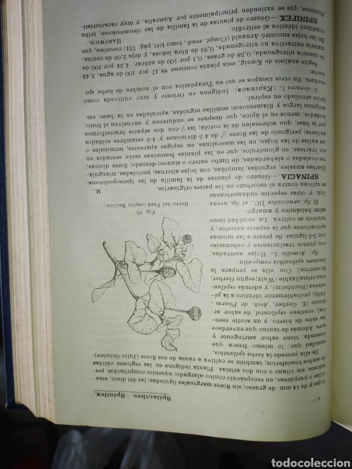 Enciclopedias antiguas: 14 tomos de la enciclopedia farmacéutica, de 1916. - Foto 7 - 212986062