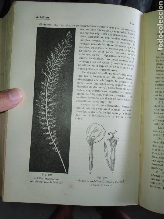 Enciclopedias antiguas: 14 tomos de la enciclopedia farmacéutica, de 1916. - Foto 9 - 212986062