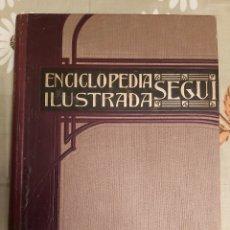 Enciclopedias antiguas: ENCICLOPEDIA ILUSTRADA SEGUI. TOMO 6. Lote 222370608