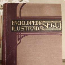 Enciclopedias antiguas: ENCICLOPEDIA ILUSTRADA SEGUI. TOMO 1 PARTE 1. Lote 222374606