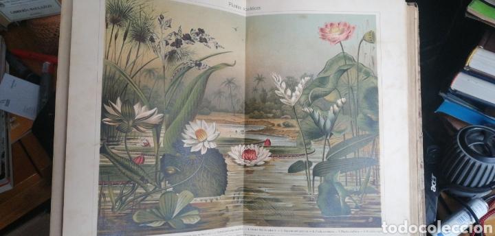Enciclopedias antiguas: (1908 Edicion Historica) Enciclopedia Universal Ilustrada Europeo- Americana,Tomo II Jose Espasa - Foto 3 - 243186185
