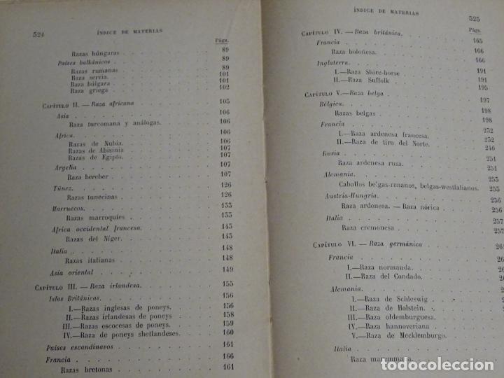 Enciclopedias antiguas: LIBRO ENCICLOPEDIA AGRÍCOLA RAZAS CABALLARES CABALLOS SALVAT EDITORES BARCELONA AÑO 1927 527P. 560GR - Foto 3 - 254939175