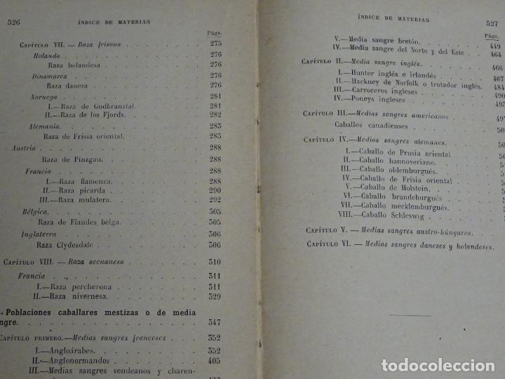 Enciclopedias antiguas: LIBRO ENCICLOPEDIA AGRÍCOLA RAZAS CABALLARES CABALLOS SALVAT EDITORES BARCELONA AÑO 1927 527P. 560GR - Foto 5 - 254939175