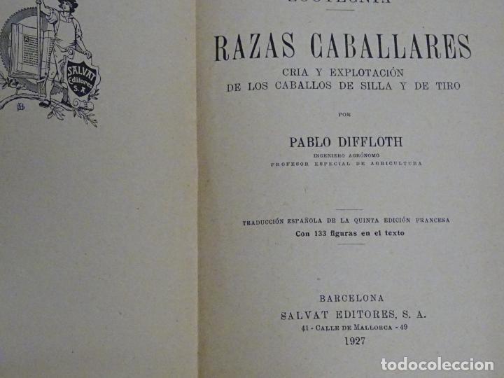 Enciclopedias antiguas: LIBRO ENCICLOPEDIA AGRÍCOLA RAZAS CABALLARES CABALLOS SALVAT EDITORES BARCELONA AÑO 1927 527P. 560GR - Foto 9 - 254939175