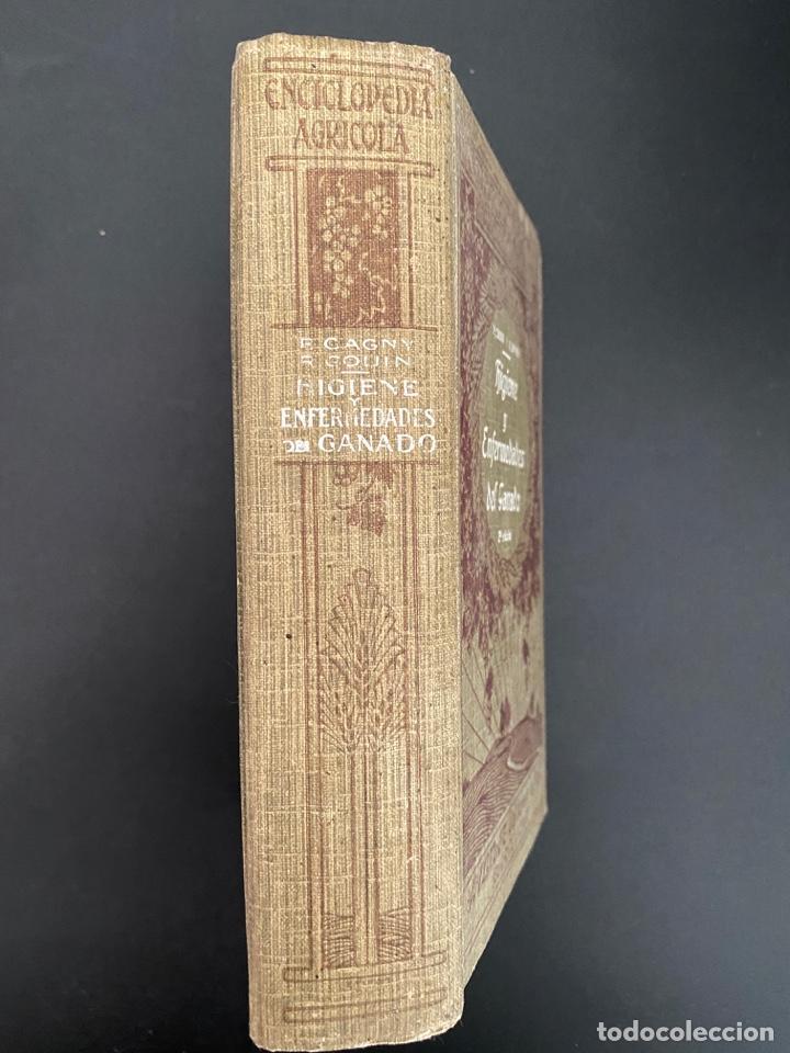 Enciclopedias antiguas: HIGIENE Y ENFERMEDADES DEL GANADO. P. CAGNY & R. GOUIN. ENCICLOPEDIA AGRICOLA SALVAT. BARCELONA,1924 - Foto 2 - 270125363