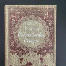 Enciclopedias antiguas: ZOOTECNIA. CABRAS, CERDOS,CONEJOS. P. DIFFLOTH. ENCICLOPEDIA AGRICOLA SALVAT. BARCELONA,1924. Lote 270125523