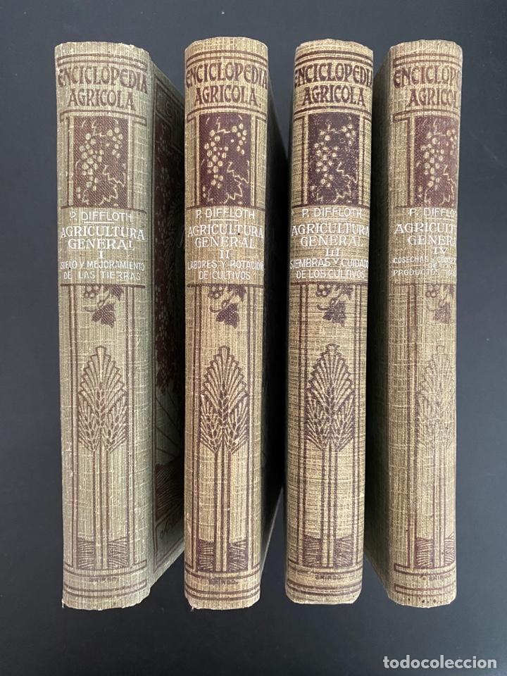 AGRICULTURA GENERAL. 4 TOMOS. P. DIFFLOTH. ENCICLOPEDIA AGRICOLA SALVAT. BARCELONA, 1927-1928 (Libros Antiguos, Raros y Curiosos - Enciclopedias)