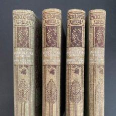 Enciclopedias antiguas: AGRICULTURA GENERAL. 4 TOMOS. P. DIFFLOTH. ENCICLOPEDIA AGRICOLA SALVAT. BARCELONA, 1927-1928. Lote 270125683