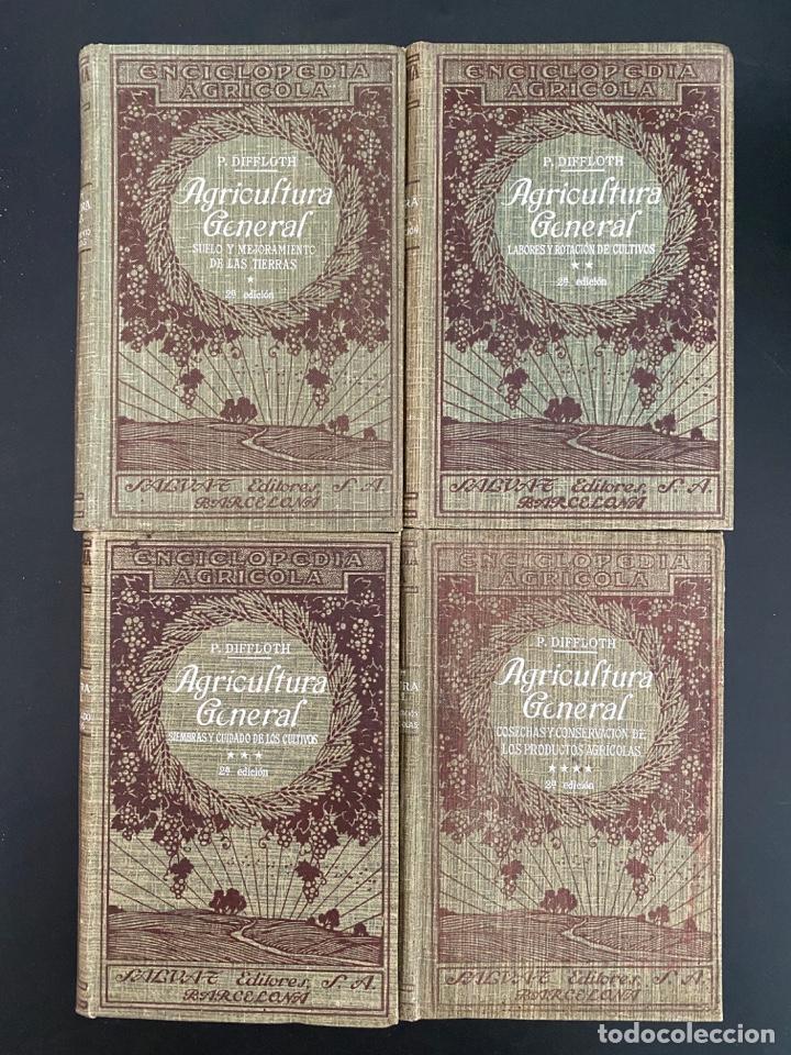Enciclopedias antiguas: AGRICULTURA GENERAL. 4 TOMOS. P. DIFFLOTH. ENCICLOPEDIA AGRICOLA SALVAT. BARCELONA, 1927-1928 - Foto 2 - 270125683