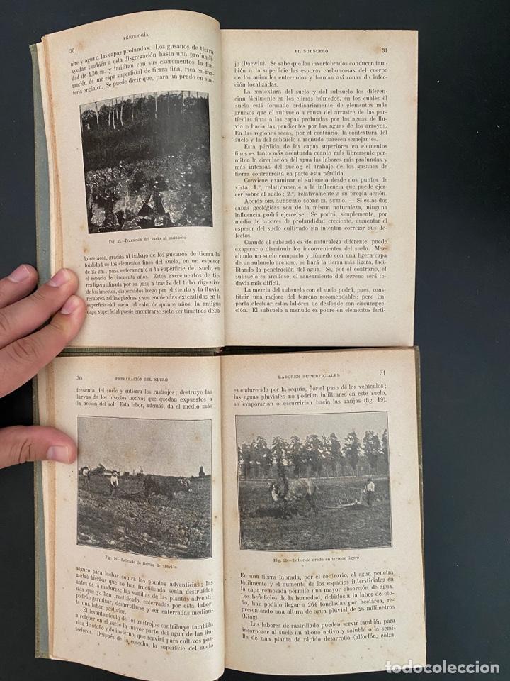 Enciclopedias antiguas: AGRICULTURA GENERAL. 4 TOMOS. P. DIFFLOTH. ENCICLOPEDIA AGRICOLA SALVAT. BARCELONA, 1927-1928 - Foto 4 - 270125683