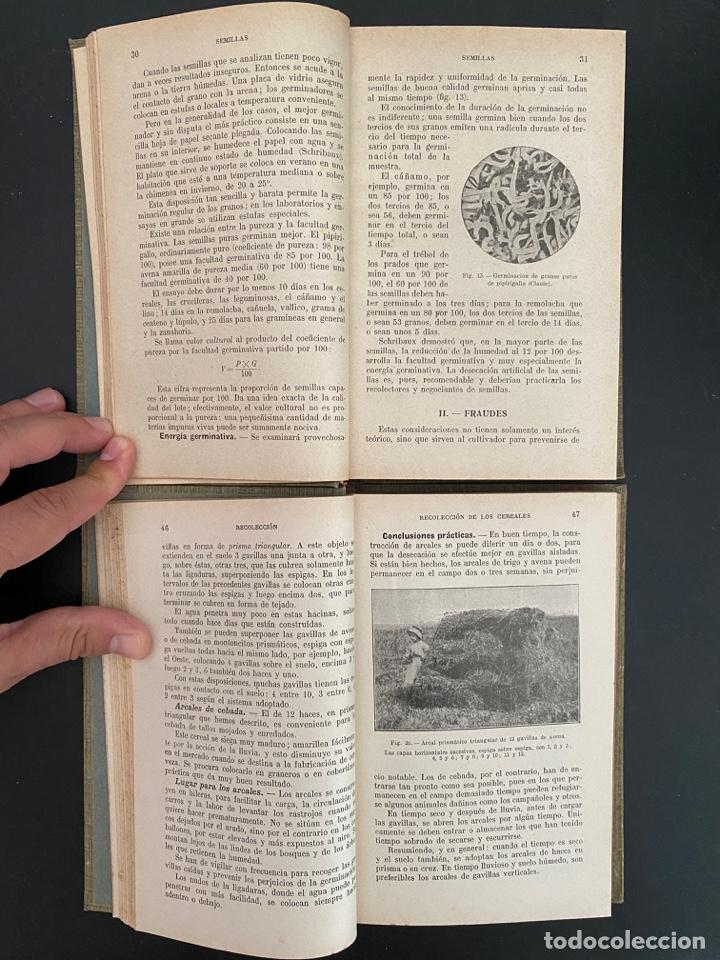 Enciclopedias antiguas: AGRICULTURA GENERAL. 4 TOMOS. P. DIFFLOTH. ENCICLOPEDIA AGRICOLA SALVAT. BARCELONA, 1927-1928 - Foto 5 - 270125683