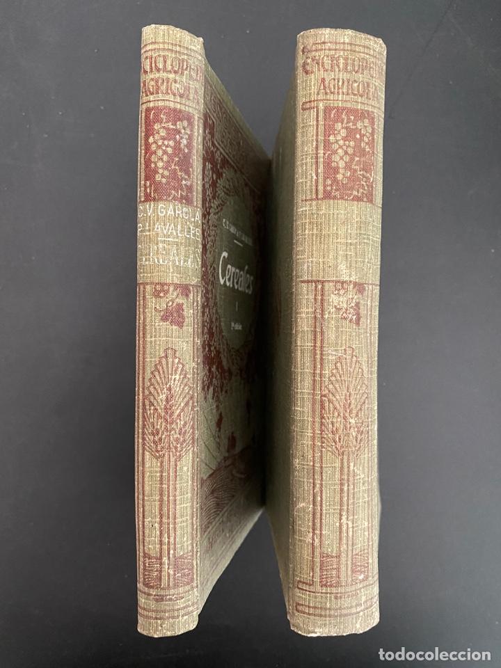 Enciclopedias antiguas: CEREALES. 2 TOMOS. C.V. GAROLA & P. LAVALLEE. NCICLOPEDIA AGRICOLA SALVAT. 2ª ED. BARCELONA, 1930 - Foto 2 - 270126188