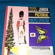 Enciclopedias antiguas: PICTORIAL ENCYCLOPEDIA 1963, WARD LOCK'S JÚNIOR, ENCICLOPEDIA JUVENIL EN INGLÉS.. Lote 274929278