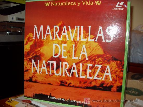 20 LASER DISC DE NATURALEZA Y VIDA, PLANETA. REBAJADO DE 75 A 60€¡¡¡¡¡¡¡¡¡¡ (Libros Nuevos - Diccionarios y Enciclopedias - Enciclopedias)