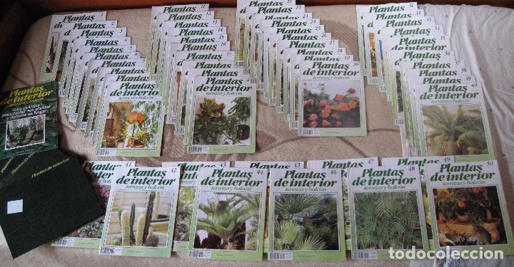 GRAN ENCICLOPEDIA PLANTAS DE INTERIOR Y JARDINERIA • PLANETA AGOSTINI (50 FASCÍCULOS + TAPAS) (Libros Nuevos - Diccionarios y Enciclopedias - Enciclopedias)
