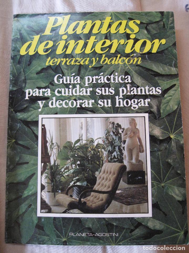 Enciclopedias: GRAN ENCICLOPEDIA PLANTAS DE INTERIOR Y JARDINERIA • Planeta Agostini (50 fascículos + tapas) - Foto 2 - 84345940